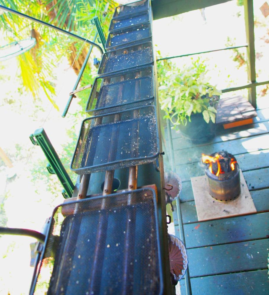 Rail feeder
